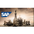 The Chess Group for SAP Professionals