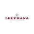 Alumni Tourismus Leuphana Universität Lüneburg