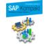 SAP Kompakt - Von Experten für Entscheider
