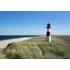 Nordsee-Netzwerk - Business an der Nordsee