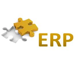 ERP-Netzwerk