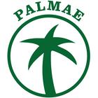 Palmae - BNI Hamburg