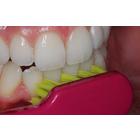 Dental Meeting Point