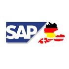 SAP Consultants DACH