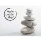 Agile Leadership 3.0