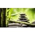 Bioscan- und Vitalstoffberatung/ Ganzheitliche Therapiesysteme