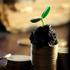 Geldanlage und Vermögen