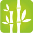 Stark wie Bambus, Die Initiative zur Förderung psychischer Gesundheit und Lebensqualität in der Arbeitswelt