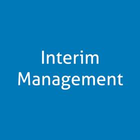 Interim Management | Interim Project Management