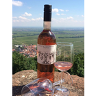 Die Pfalz - Rechts und links der Weinstraße