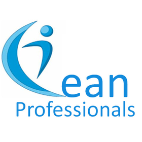 Lean for Professionals
