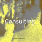 Consulting - Unternehmensberatung - Management Consulting