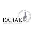 Horse Assisted Education - betriebliche und persönliche Aus- und Weiterbildung mit Pferden als Medium.