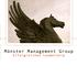 Münster Management Group - Erfolgreiches Leadership