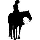 Westernreiten und Quarter Horses
