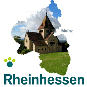 XING Rheinhessen