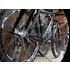 Junge Unternehmer in der Fahrradbranche