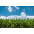 EU-Projekt BioLinX | Biobasierte Innovationen weiterentwickeln und auf den Markt bringen.