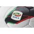 Serie A - la lega calcio italiana e la passione azzura F.I.G.C.
