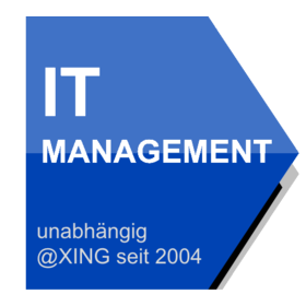 IT Management (knowledge, networking and leading IT)