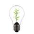 Lean Innovation für etablierte Unternehmen