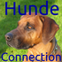 Hunde Connection