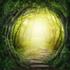 Die Heldenreise - Das Abenteuer der kreativen Selbsterfahrung