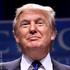Donald Trump-Factor