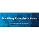 BlackBerry Mobile Business