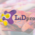 Learning & Development - L&D-pro