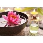 Beauty und Wellnesskonzepte