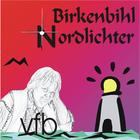 birkenbihl-nordlichter