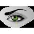 Webcam Eye Tracking