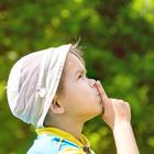 Hochsensibilität - Pädagogische Informationen und Erfahrungen für Lehrer, Eltern und Interessierte