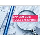 SAP SEM-BCS TOOLS und Strategie
