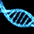 Next-Generation Sequencing data analysis