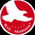 W.I.E.-Akademie