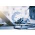 Interim Management, Aufträge,Vermittlung