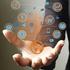 eCommerce / Digital Network