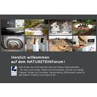 NATURSTEINForum - Informationen über Naturstein - im Haus und Garten, auf Plätzen und Promenaden, für Brunnen und weiteres